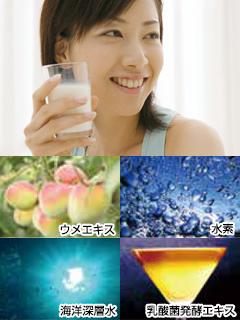 2019還元発酵乳酸菌320_01.jpg