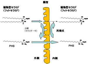 20120419_r01.jpg